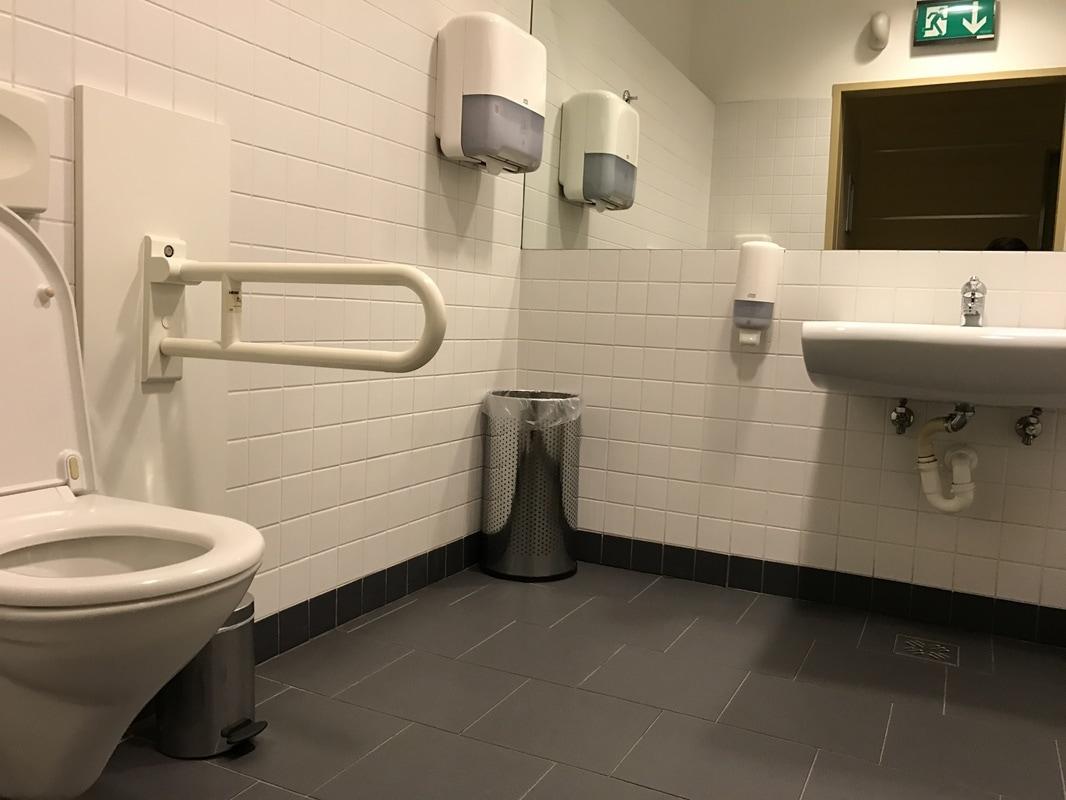 Splošne invalidske sanitarije