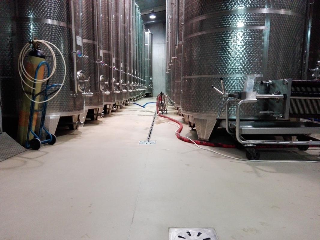 Prostor za predelavo vina
