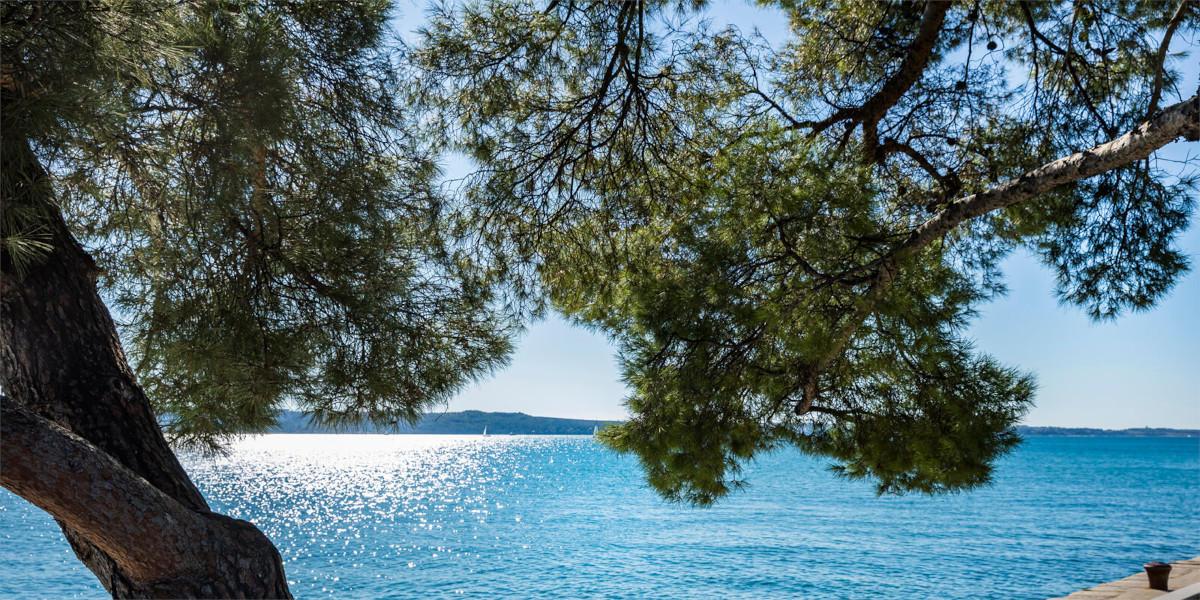 Podoba Mediterana