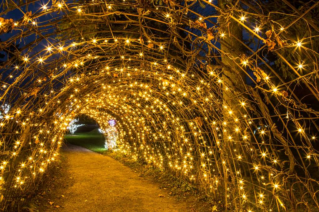 Pravljični tunel