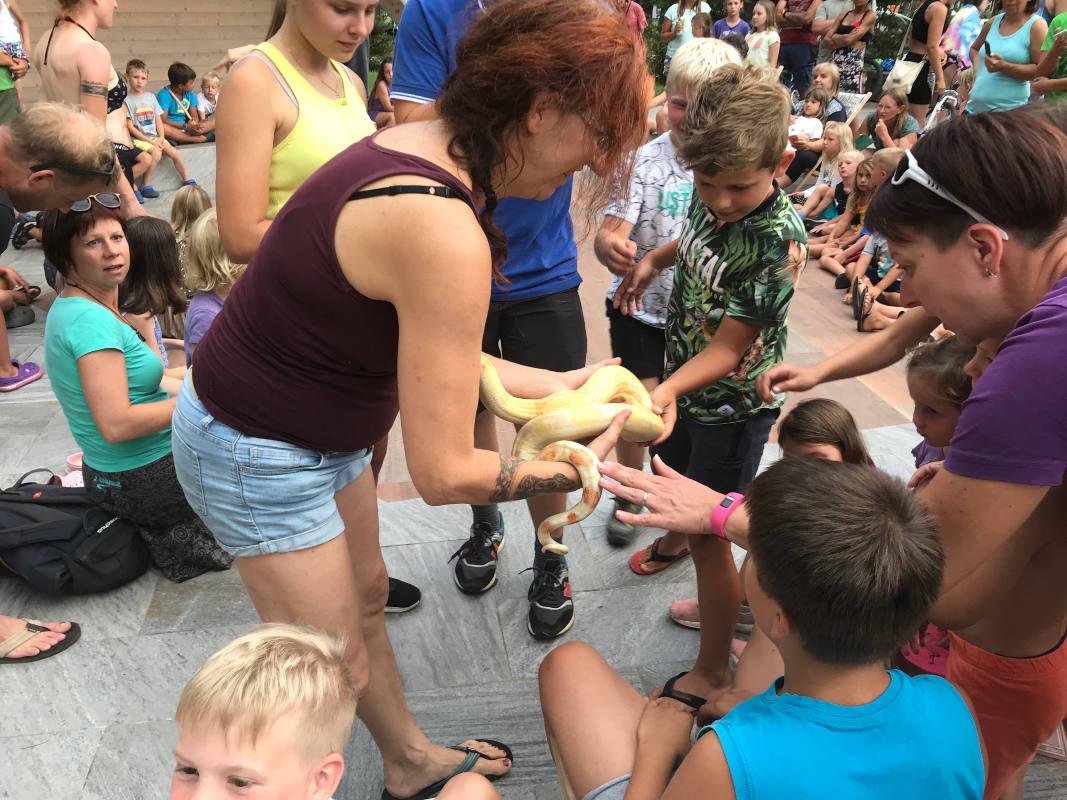 Demonstracija živali
