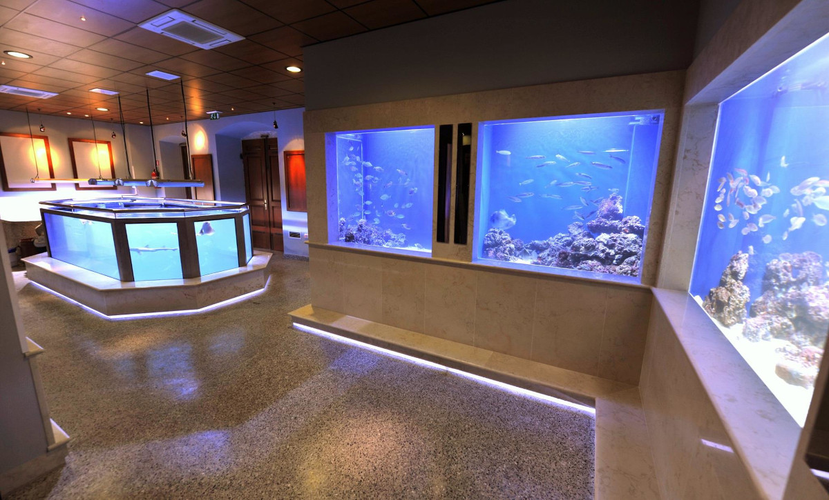 Prenovljeni Akvarij Piran