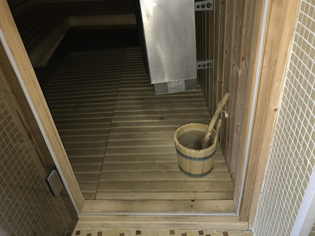 Vhod v finsko savno