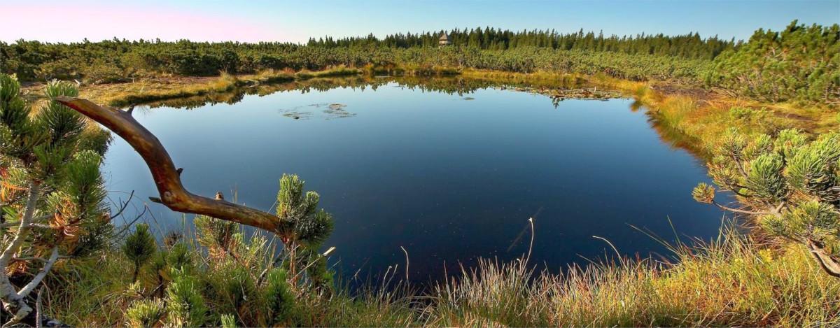 Bližnja Lovrenška jezera