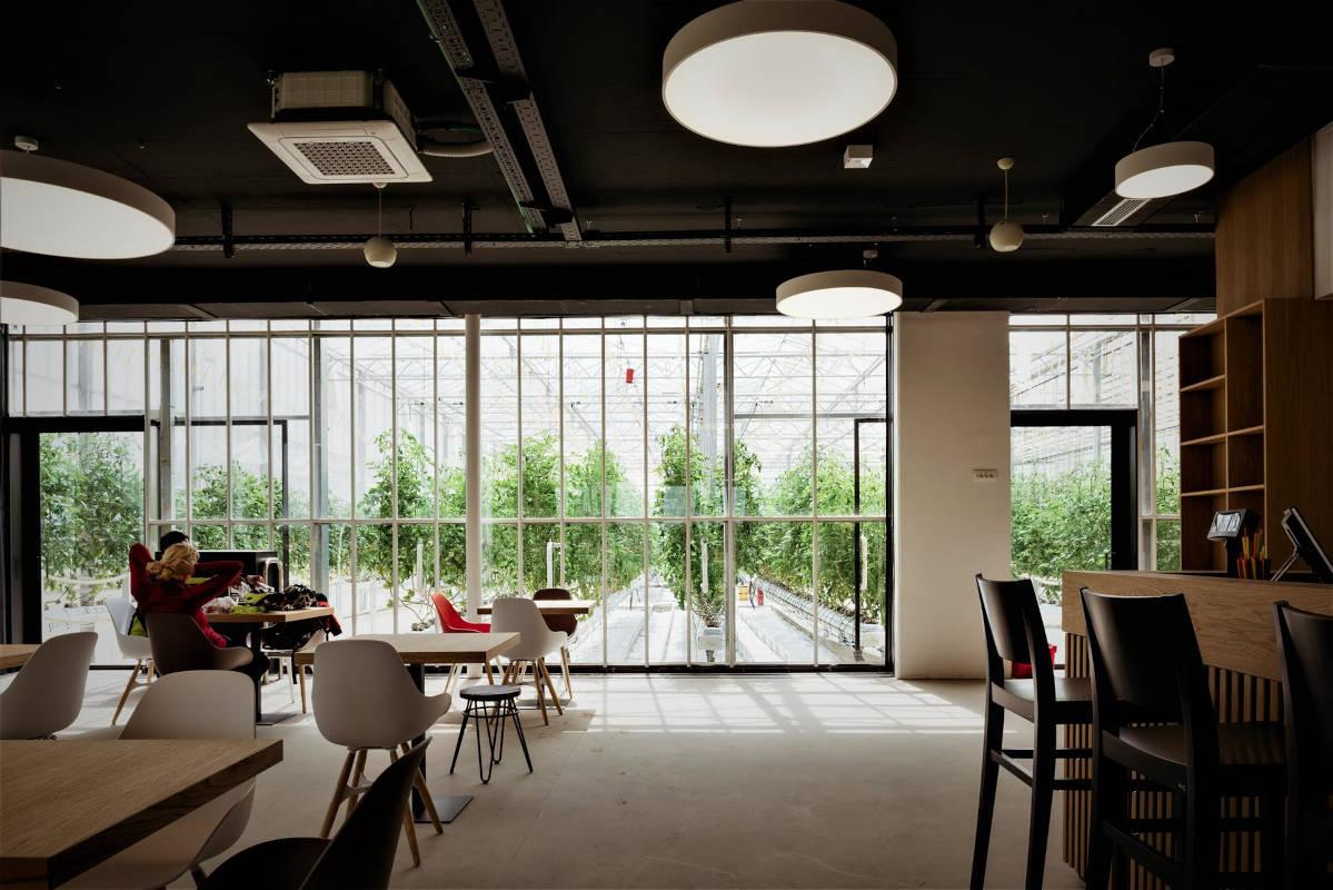 Iz kavarne se ponuja lep razgled na rastlinjake