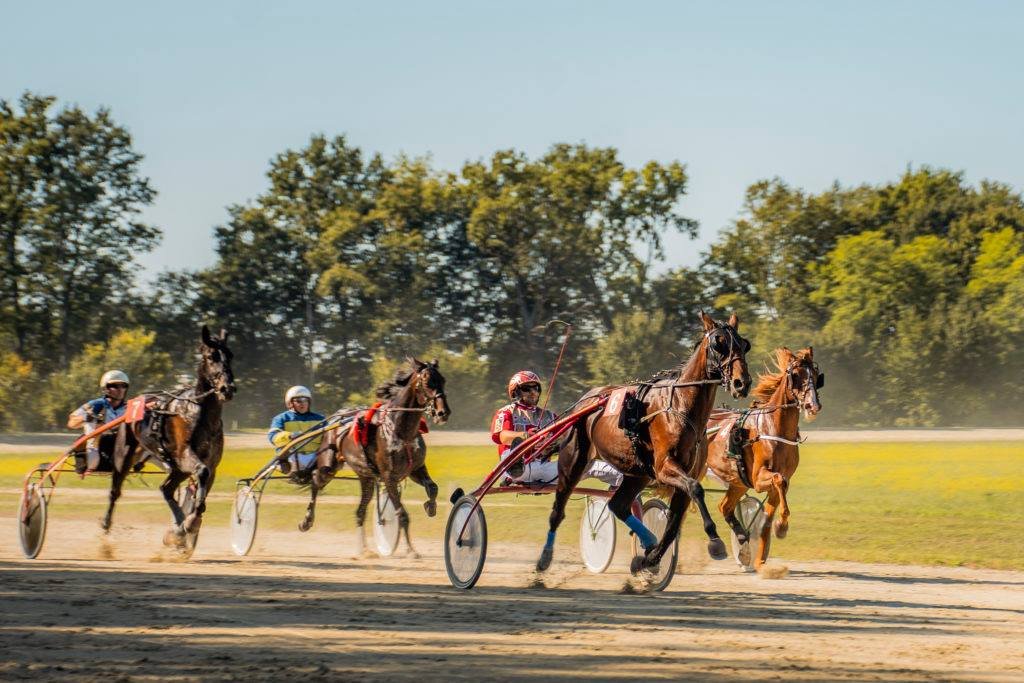 Kasaške dirke