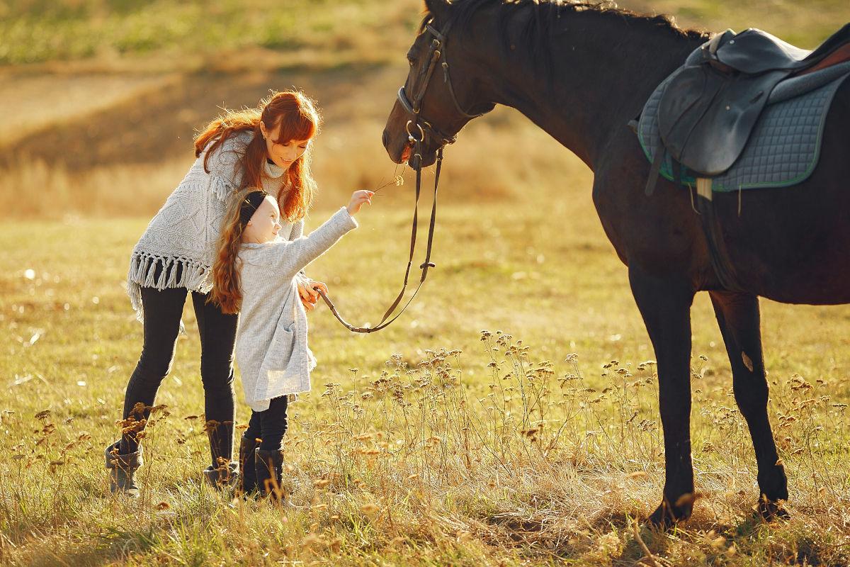 Terapevtski učinek živali na primeru konja