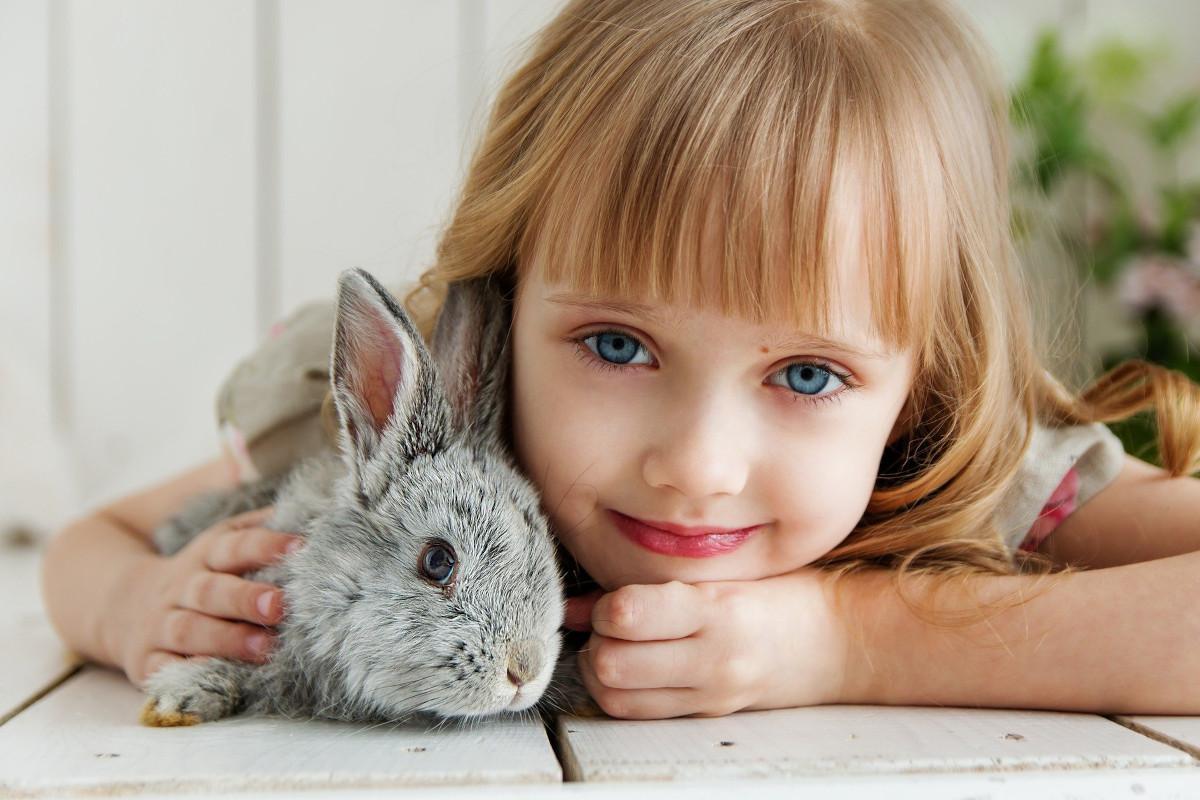 Terapevtski učinek živali-zajca